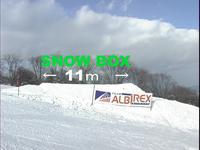 Snow11_1